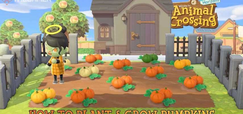 Animal Crossing: New Horizons - How To Plant & Grow ...